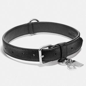 Coach Large Dog Collar